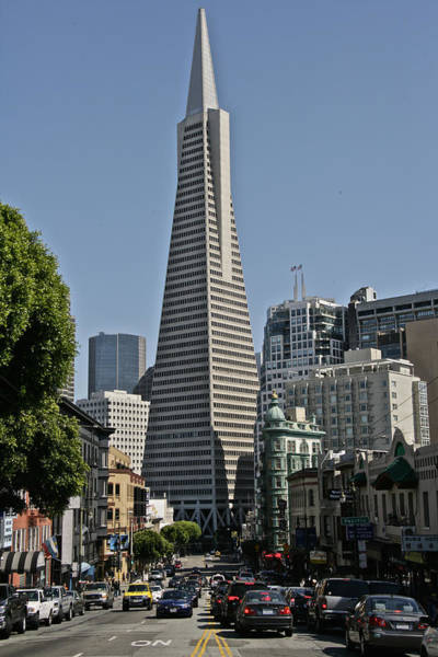 Photograph - Transamerica Tower by Steven Lapkin