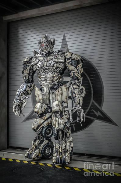 Wall Art - Photograph - Transformer At Nest by Edward Fielding