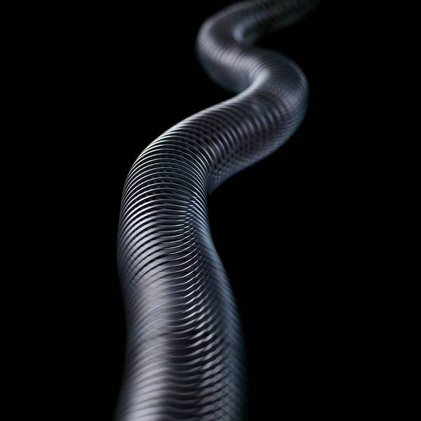 Demonstration Photograph - Transverse Wave by Science Photo Library