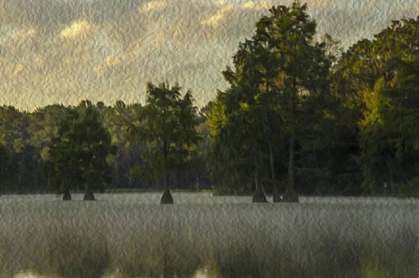 Bald Cypress Digital Art - Trap Pond 6 by Darlene Freas