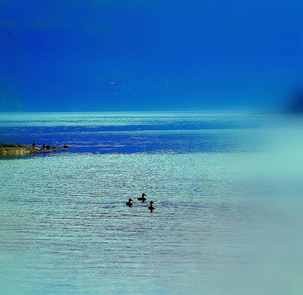Capable Photograph - Travelling Into The Blue And Never Returning  by Hilde Widerberg