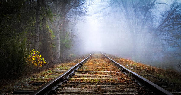 Photograph - Traveling On The Tracks by Debra and Dave Vanderlaan