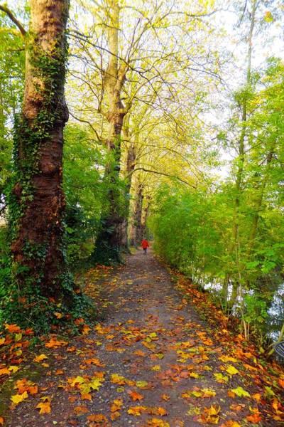 Photograph - Traversee De L'automne Au Bord Du Canal De Seclin by Marc Philippe Joly