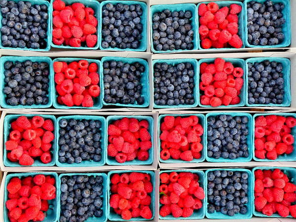 Photograph - Trays Of Fresh Blueberies And Raspberries by Jeff Lowe