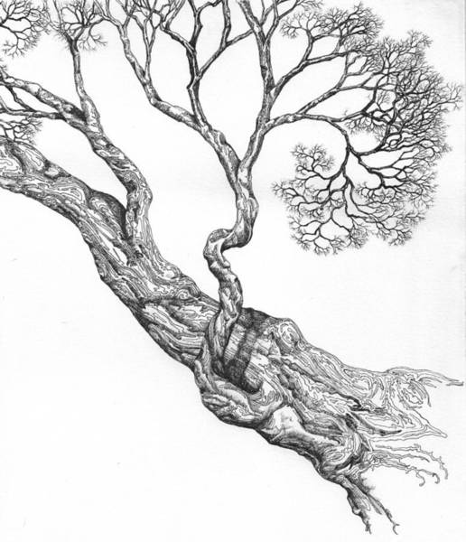 Digital Art - Tree 16 by Brian Kirchner