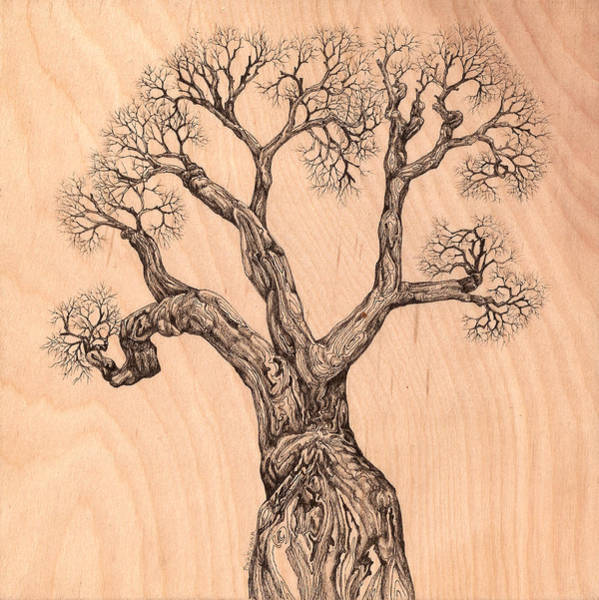 Digital Art - Tree 36 On Wood by Brian Kirchner