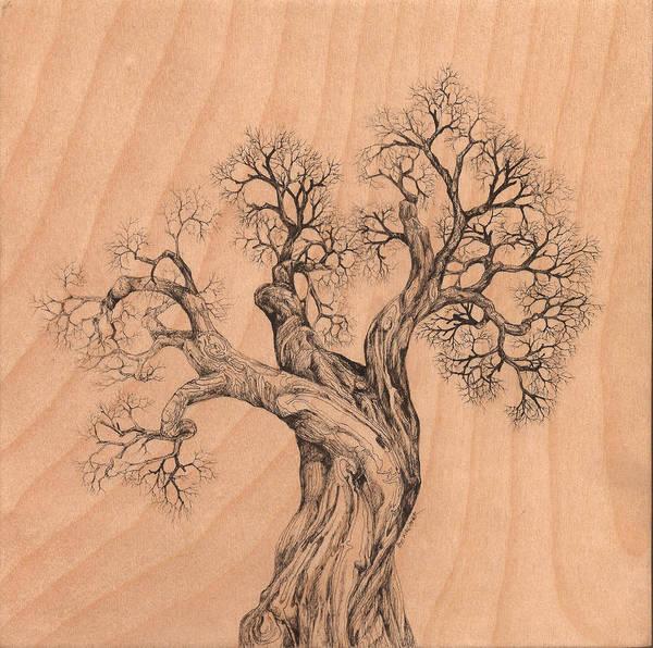 Digital Art - Tree 38 On Wood by Brian Kirchner
