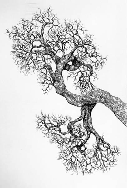 Digital Art - Tree 9 by Brian Kirchner