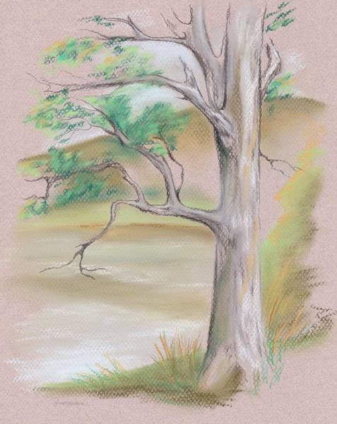 Pastel - Tree By A Mountain Lake by MM Anderson