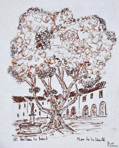 Wall Art - Photograph - Tree Growing In Place De La Liberte by Richard Lawrence