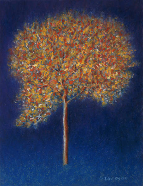 Night Time Painting - Tree In Blossom by Peter Davidson