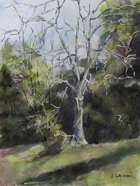 Sycamore Painting - Tree Beside The Road by Janet Felts
