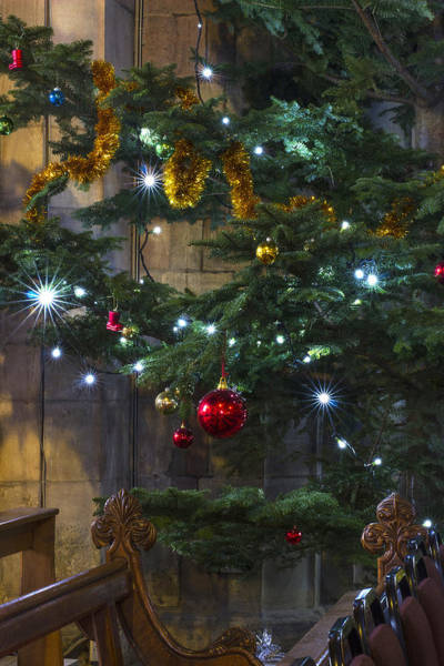 Photograph - Tree Lights And Baubles by Ian Mitchell