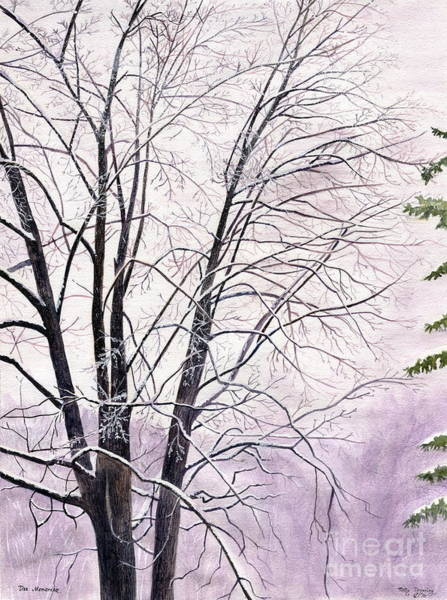 Art In Canada Painting - Tree Memories by Melly Terpening