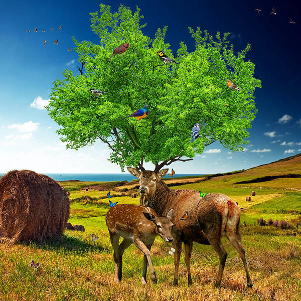 Grass Tree Digital Art - Tree Of Life by Marian Voicu