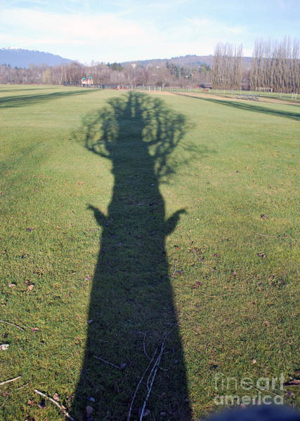 Photograph - Tree People #1 by Bill Thomson