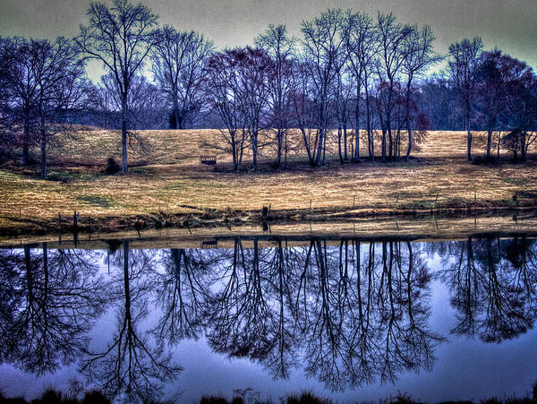 Photograph - Tree Reflections Of Winter  by Reid Callaway