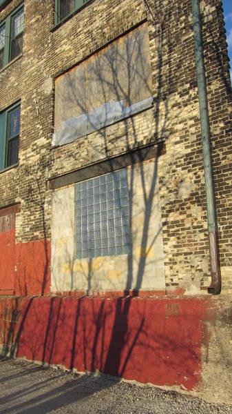 Photograph - Tree Shadow On Brick 1 by Anita Burgermeister