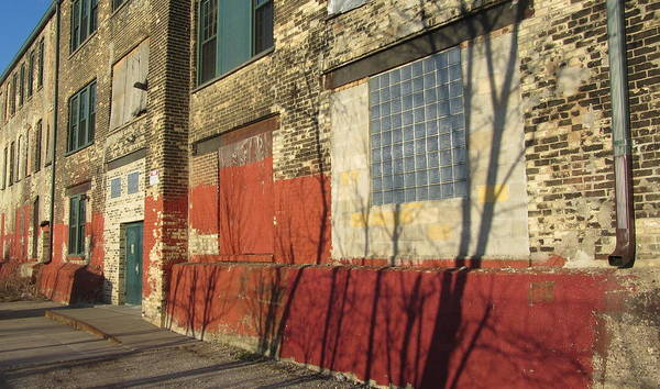 Photograph - Tree Shadow On Brick 2 by Anita Burgermeister