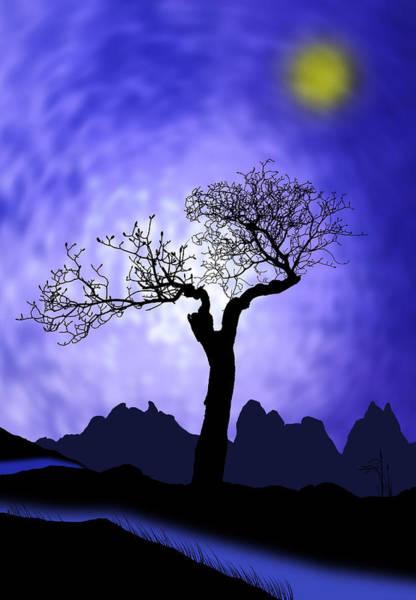 Wall Art - Photograph - Tree Silhouette by Mark Rogan