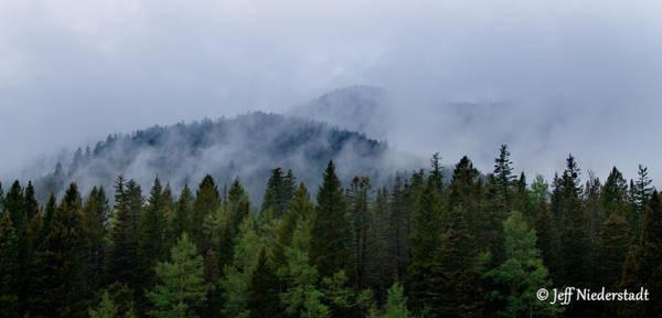 Tree Top Clouds Art Print