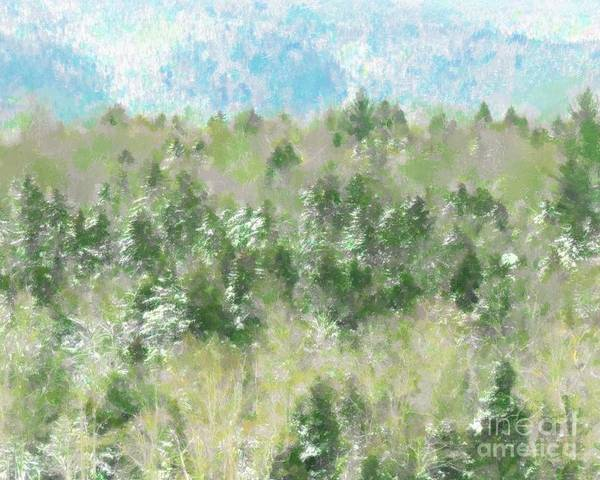 Photograph - Tree Tops by Donna Cavanaugh