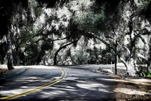 Digital Art - Tree Tunnel by Photographic Art by Russel Ray Photos