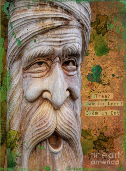 Wall Art - Photograph - Treebeard by Gillian Singleton