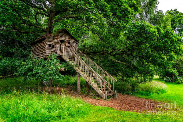 Entrance Digital Art - Treehouse by Adrian Evans
