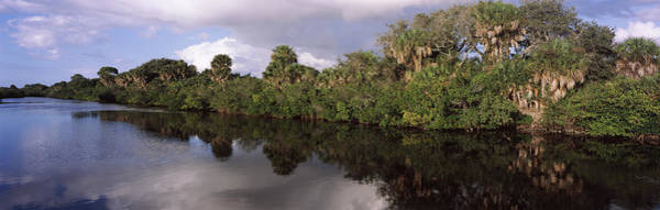 Peacefulness Photograph - Trees Along A Channel, Venice, Sarasota by Panoramic Images