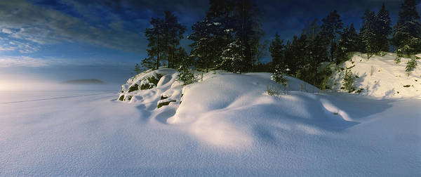 Peacefulness Photograph - Trees Along A Frozen Lake, Saimaa by Panoramic Images