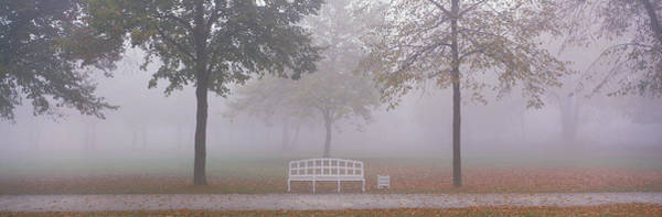 Envelop Wall Art - Photograph - Trees And Bench In Fog Schleissheim by Panoramic Images