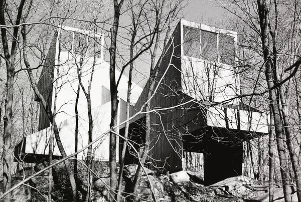 Bare Tree Photograph - Trees And Facade Of Myron Goldfingers' Home by Norman McGrath