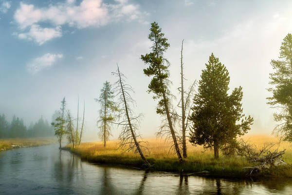 Firehole River Wall Art - Photograph - Trees And Mist At Sunrise by Adam Jones