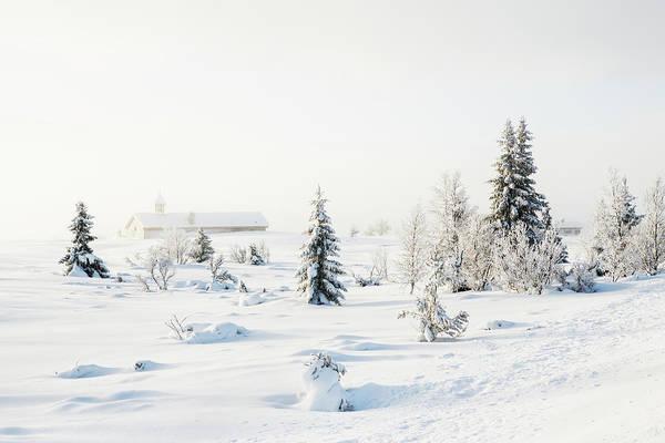 Lillehammer Photograph - Trees And Villagechurch Covered In by Betsie Van Der Meer
