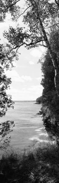 Lakeside Wall Art - Photograph - Trees At The Lakeside, Cave Point by Panoramic Images