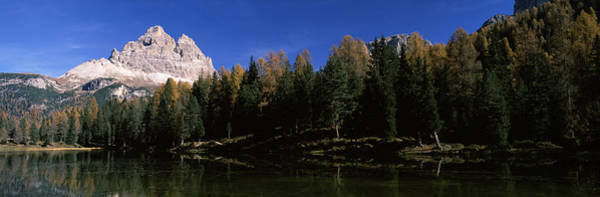 Peacefulness Photograph - Trees At The Lakeside, Lake Misurina by Panoramic Images