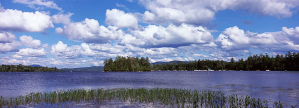 Lakeside Wall Art - Photograph - Trees At The Lakeside, Raquette Lake by Panoramic Images