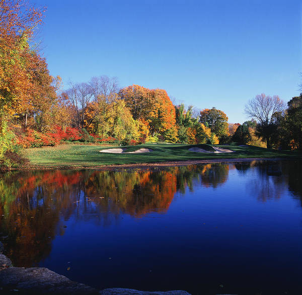 Fairfield Photograph - Trees In A Golf Course, Patterson Club by Panoramic Images
