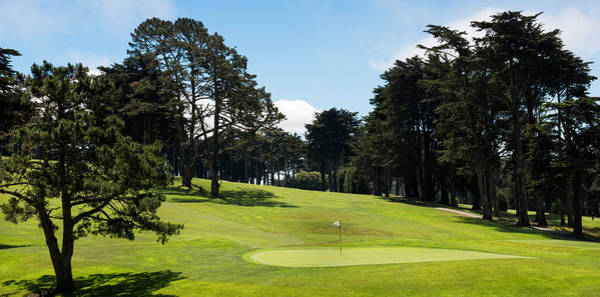 Peacefulness Photograph - Trees In A Golf Course, Presidio Golf by Panoramic Images