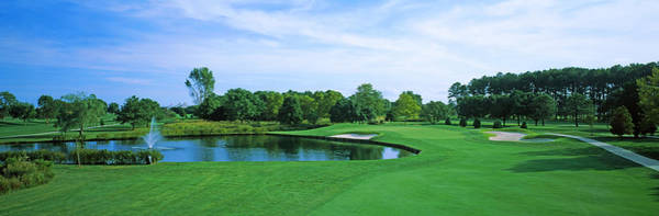 Rehoboth Beach Photograph - Trees In A Golf Course, Rehoboth Beach by Panoramic Images