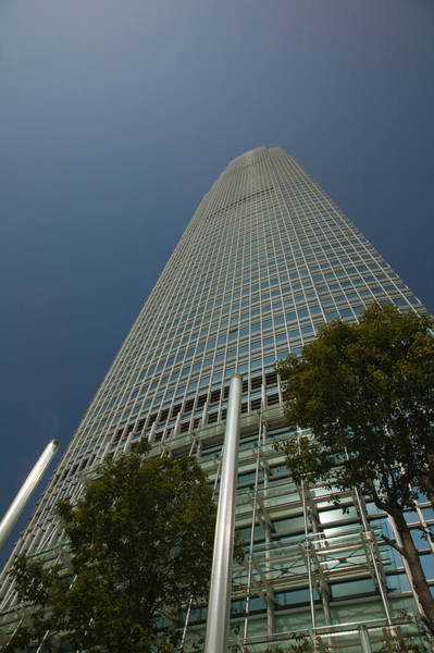 Financial Centre Photograph - Trees In Front Of A Building, Two by Panoramic Images