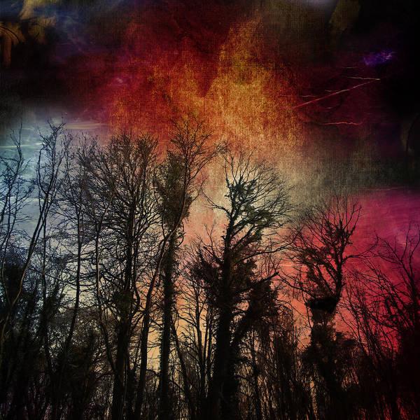 Wall Art - Digital Art - Trees No.7  by Andy Walsh