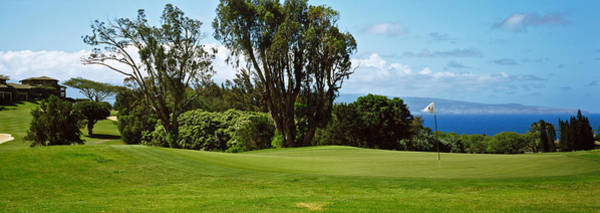 Kapalua Photograph - Trees On A Golf Course, Kapalua Golf by Panoramic Images