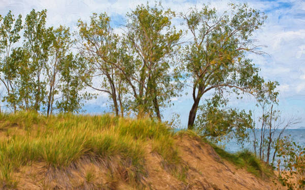 Photograph - Trees On A Sand Dune Overlooking Lake Michigan by John M Bailey