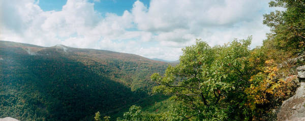 Catskill Photograph - Trees On Mountain, View From Sunset by Panoramic Images