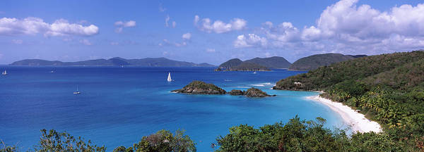 Sea Of Serenity Photograph - Trees On The Coast, Trunk Bay, Virgin by Panoramic Images
