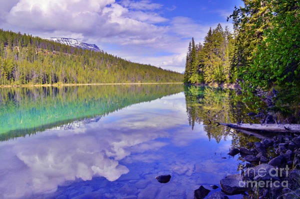 Photograph - Trees Reflected At Valley Of The Five Lakes by Tara Turner