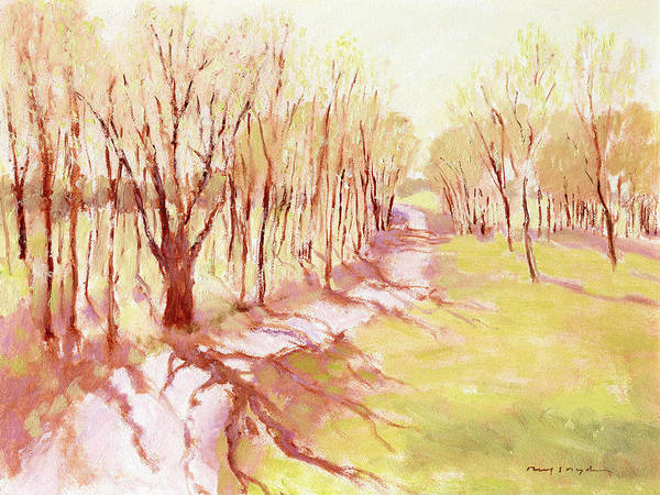 Painting - Trees4 by J Reifsnyder