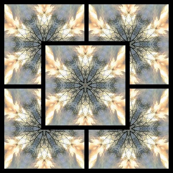Digital Art - Treescape Feather Page by Derek Gedney